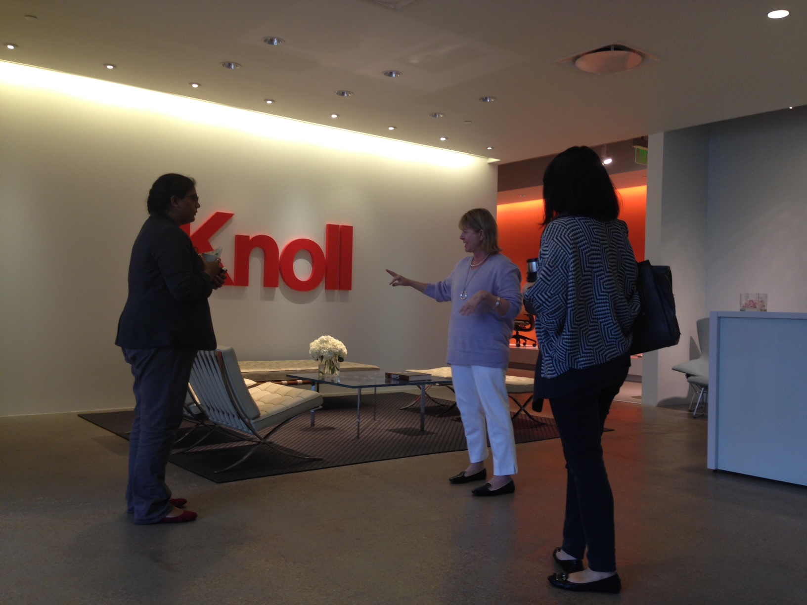 Student Mentoring: Historical Perspective at Knoll