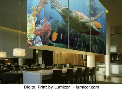4-Lumicor-digital_print.jpg